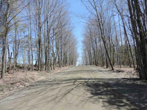 Lots A & B. Leblanc Road Barton VT 05822