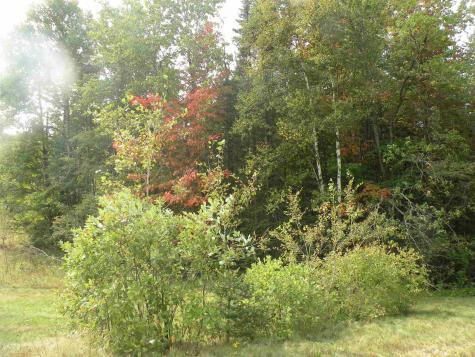 Route 3 North Carroll NH 03595
