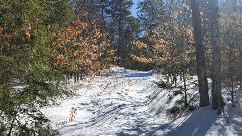 4 Acadia Way Conway NH 03818
