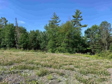 Duck Pond Road Waterford VT 05819
